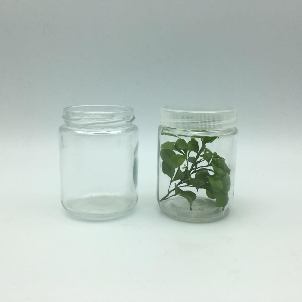 ظروف شیشه ای کشت بافت مخصوص آزمایشگاه