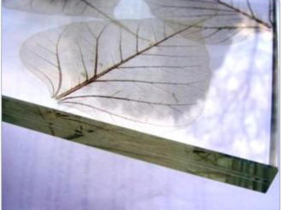 سفارش و خرید عمده شیشه لمینت ساده، رنگی، طرحدار